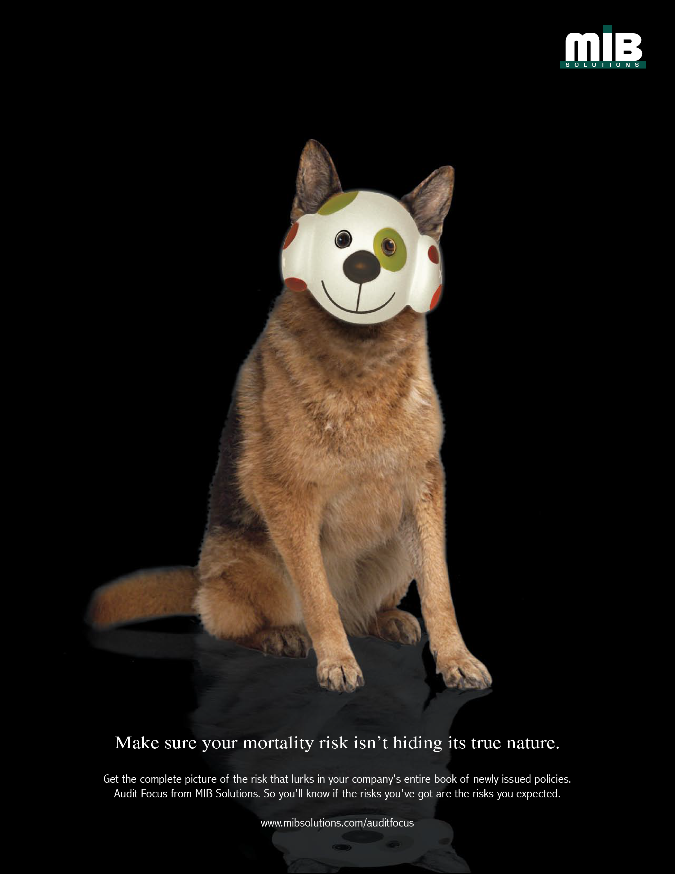 MIB ad - dog